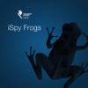 iSpy Frogs