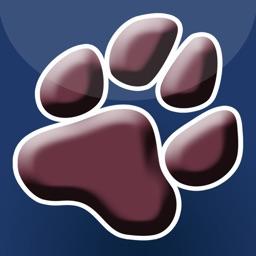 Cougar Run Elementary