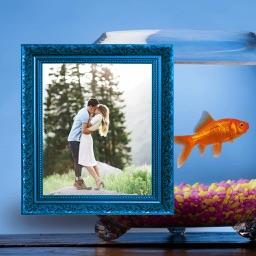 Aquarium Photo Frame - Amazing Picture Frames & Photo Editor