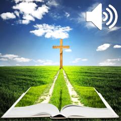Audio Bible en Français (Louis Segond)