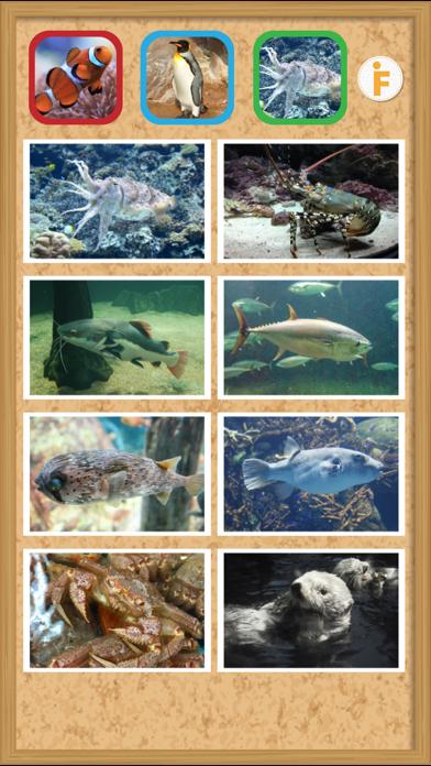 とびだす水族館のおすすめ画像4