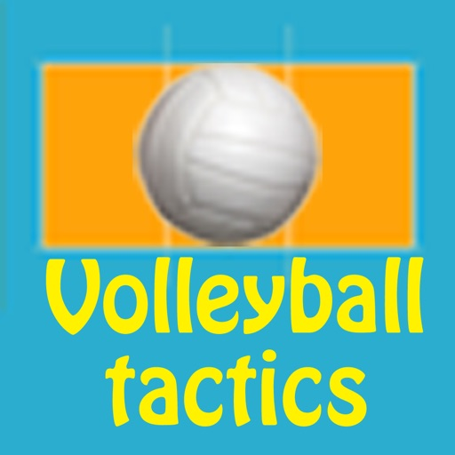 Volleyball strategy board