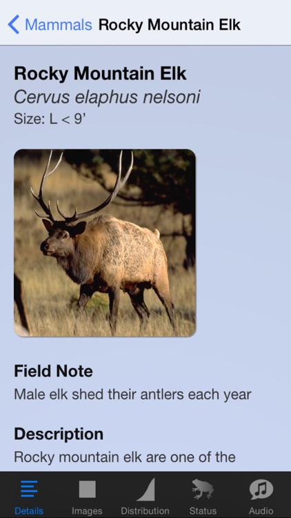 Rocky Mountain National Park Field Guide