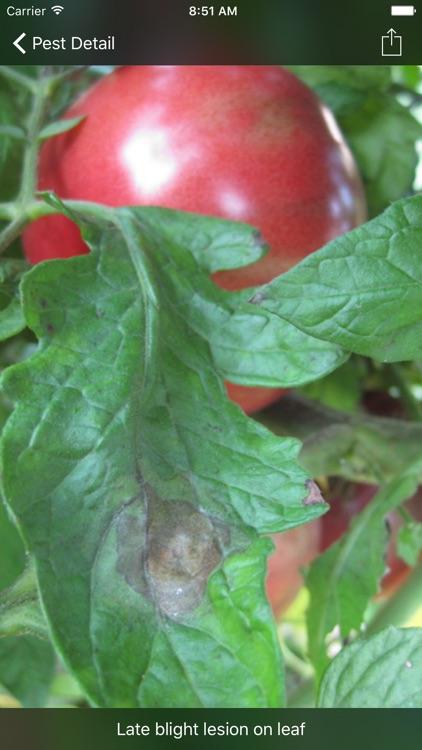Purdue Tomato Doctor screenshot-3