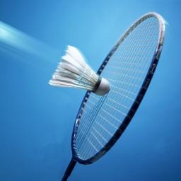 羽毛球技精练 - 羽毛球教学高清视频教学