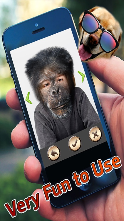 Animal Camera Face Changer