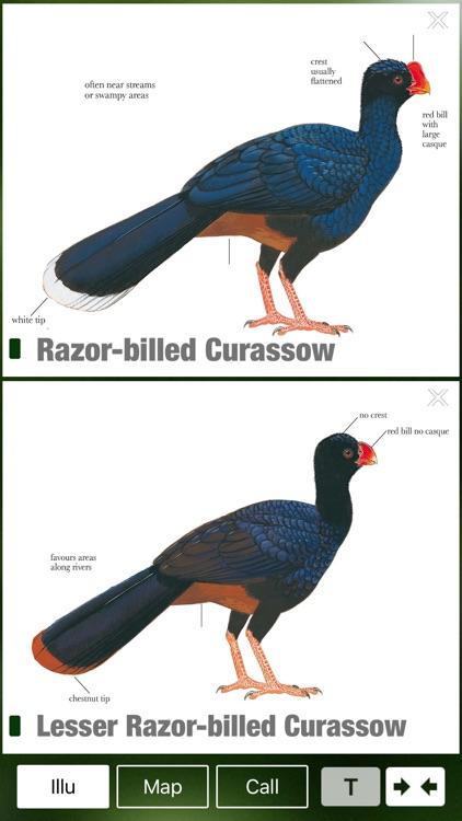 All Birds Northern South America - a field guide to all the species recorded in Ecuador, Colombia, Guiana, Peru, Venezuela screenshot-3