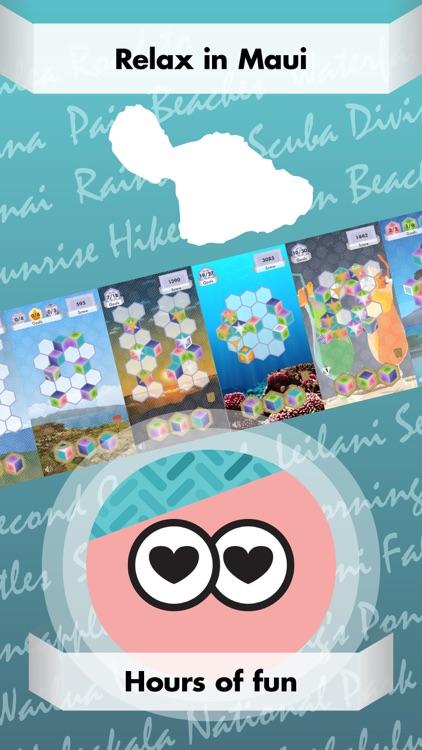 Triplicata Maui: Puzzle Game screenshot-3