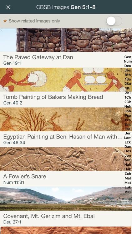 NIV Cultural Backgrounds Study Bible screenshot-3