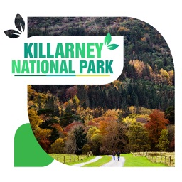 Killarney National Park Travel Guide