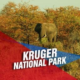 Kruger National Park Tourism Guide