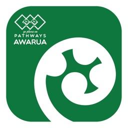 Pathways Awarua: Road Code