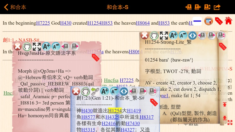 Handy Bible Chinese Pro 隨手讀聖經 screenshot-4