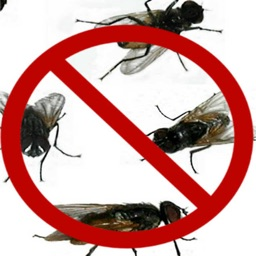 Ultrasound House Fly Repellent Super