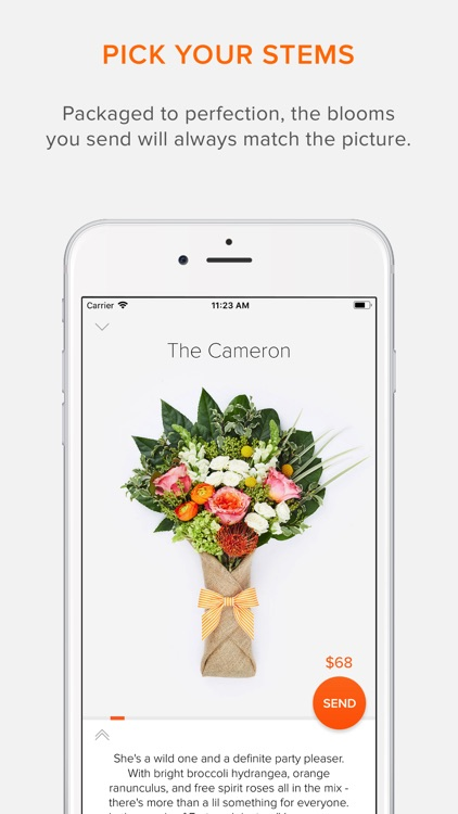 BloomThat - Send Flowers Now!