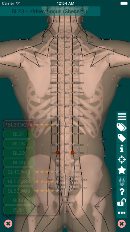 Massage Map 3D