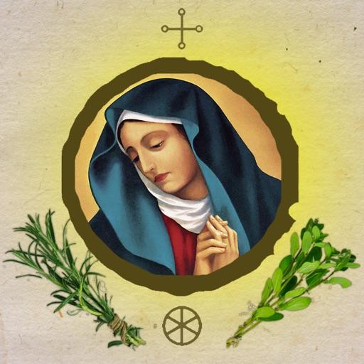 Sanft heilen mit Naturheilkunde - Das Heilwissen der Hildegard von Bingen