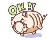 さかぶー - 蚊取り線香の豚ステッカー(スタンプ) for iMessage