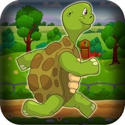 Super Flying Turtle