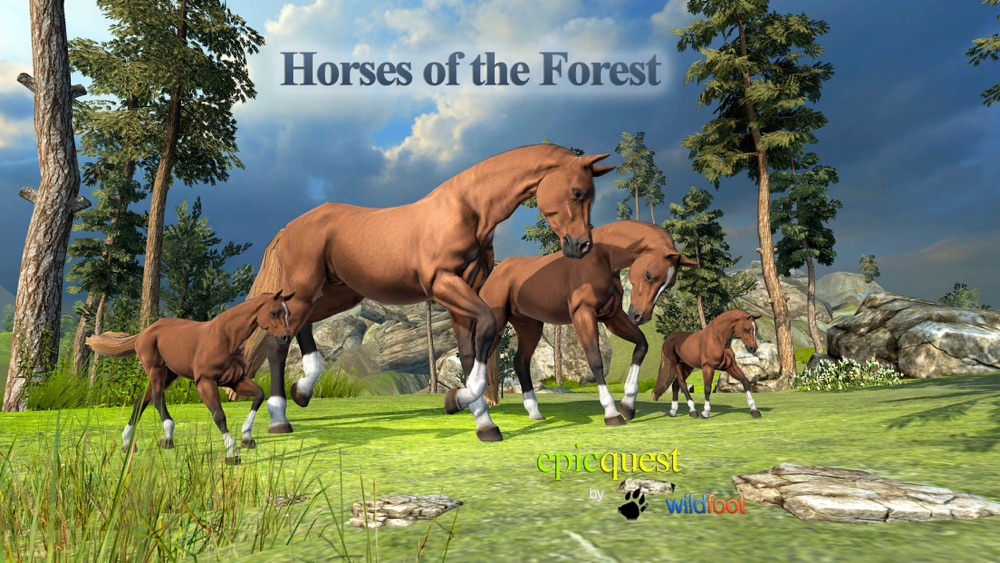 Horses of the Forest