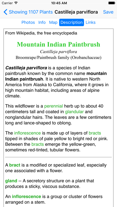 Mt Rainier Wildflowers screenshot four