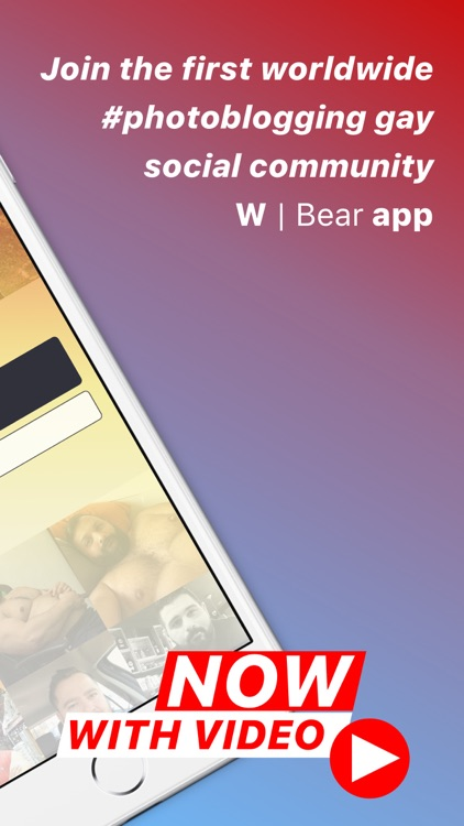 W   Bear :  Gay Social Network