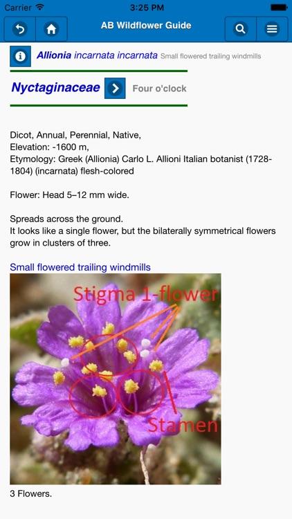 Anza-Borrego Wildflower Guide screenshot-3