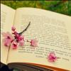 Sách hay RÈN NGHỊ LỰC - Offline