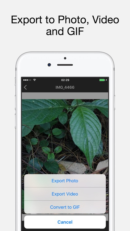 Live Exporter - Live Photo to GIF, Video and Photo