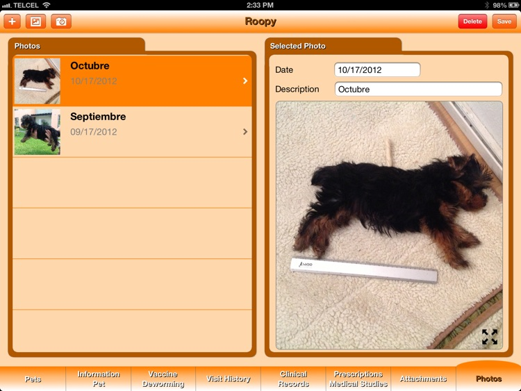 Pet's Veterinary Records screenshot-3