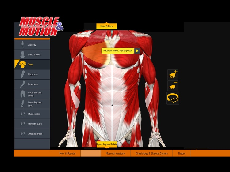 Muscle and Motion Anatomy screenshot-2