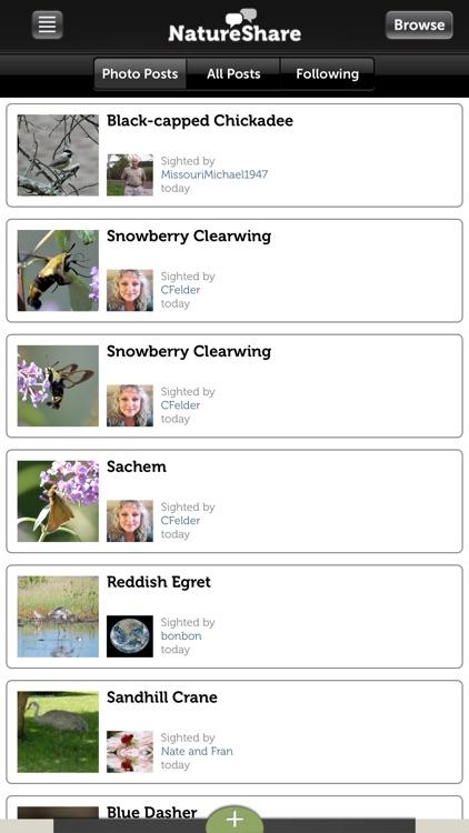Audubon Bird Guide: Owls – Field Guide screenshot-4