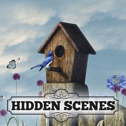 Hidden Scenes - Summer Secrets