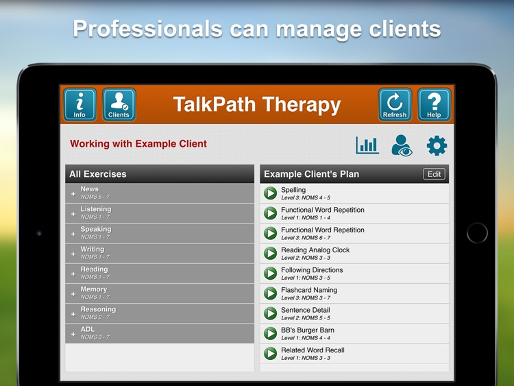 Lingraphica TalkPath Therapy