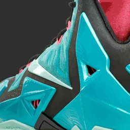 Lebron Shoe Edition - All Time Releases