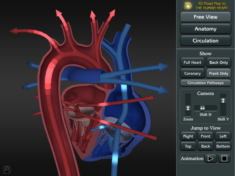 3D Road Map to the Human Heart screenshot-4