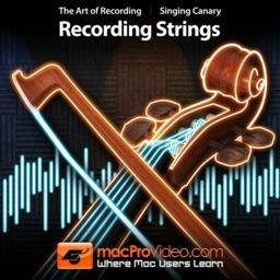 The Art of Audio Recording 105