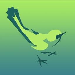 Bird Quick List Australia