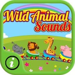 Wild Free Animal Sounds