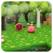 PRO - Kirby triple Deluxe Version Guide