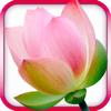 Gayatri Mantra - Mystical India