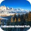 Yellowstone National Park USA Tourist Guide