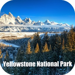 Yellowstone National Park USA Tourist Guide