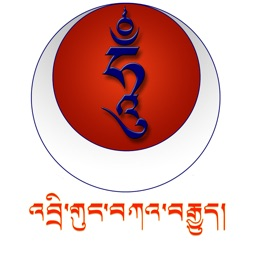 The Drikung Kagyu Today