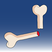 Ortho Traumapedia app review