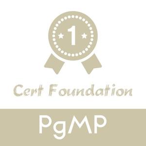 PMI-PgMP Test Prep