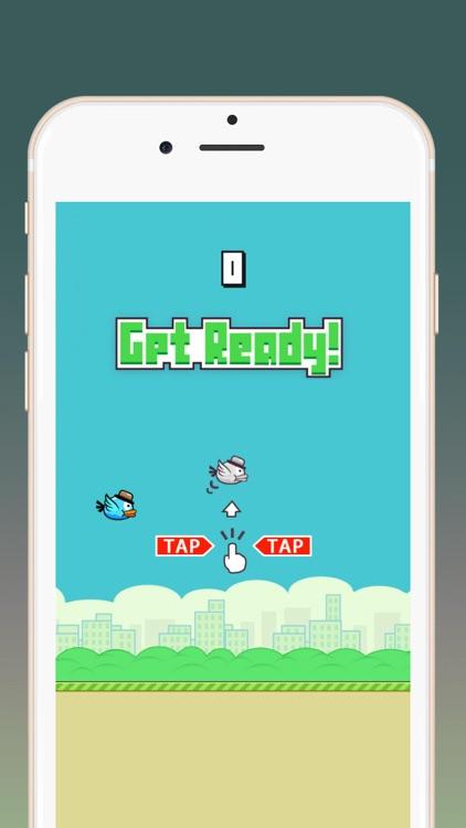 Crazy Bird:Flying bird