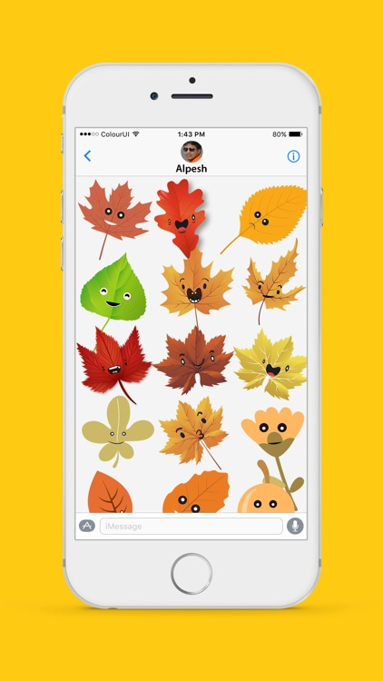 Autumnoji - Autumn Leaf Emoji & Pumpkin Sticker.s screenshot-2