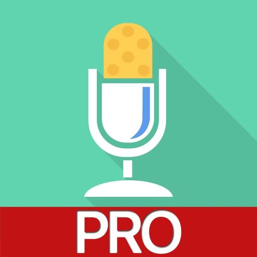 Voice Changer Professional