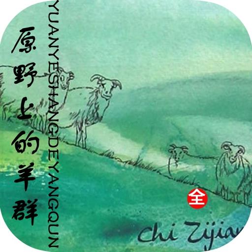原野上的羊群—迟子建散文集,文学作品